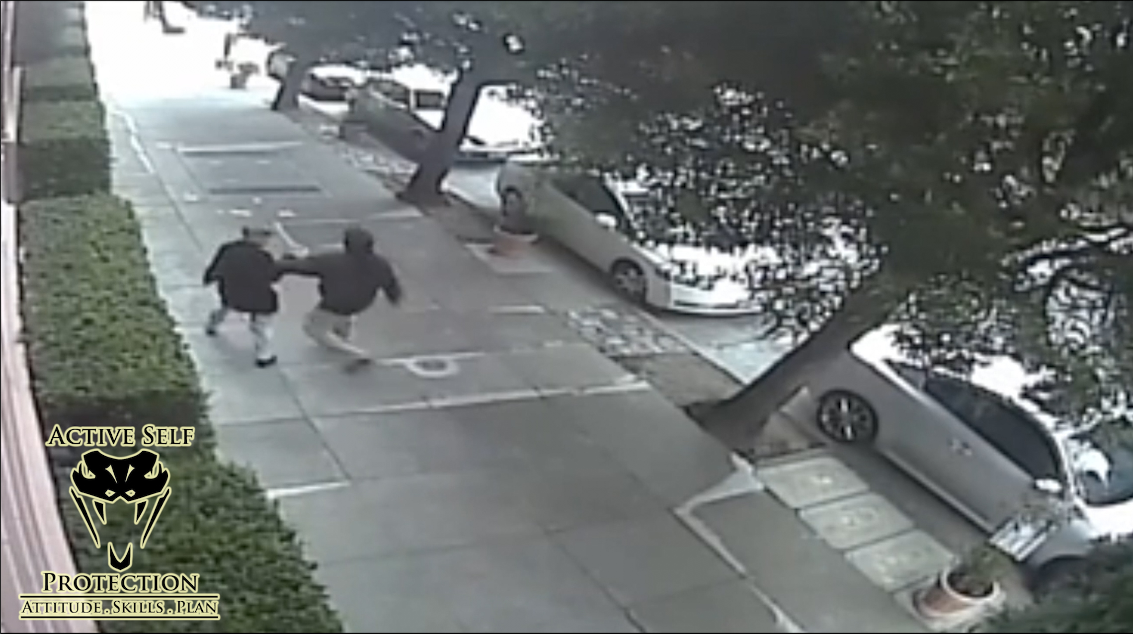 Woman's Beating by Stranger Caught on Camera